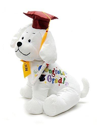 Autograph Graduation Bear (Graduation Autograph Stuffed Dog With Pen, Red Hat - Congrats Grad!)