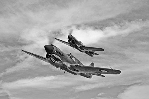 Two Curtiss P-40 Warhawks in flight near Nampa Idaho Poster Print (17 x 11) P-40 Warhawk Flight