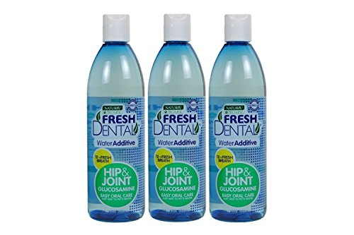 Naturel Promise Fresh Dental Hip & Joint Water Additive for Dogs and Cats, 18-Ounce (3 Pack) from Naturel Promise