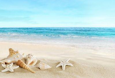[해외]【 Woliwowa 】 아름 다운 푸른 하늘과 바다 백사장 조개 해변 풍경 포스터 (A 타입) 병행 수입품 / 【Woliwowa】 Beautiful Blue Sky and Sea White Sandy Beach Landscape Poster (Type A) Parallel Imports