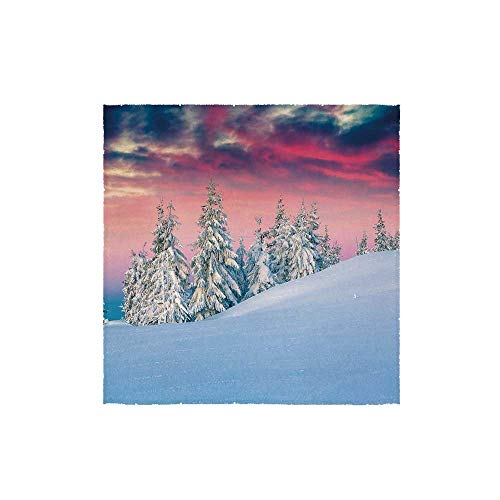 C COABALLA Winter Durable Square Small Towel,Idyllic Scenery in Snow Covered Mountains Pine Tree Forest Majestic Sky Serenity for Bathroom,13