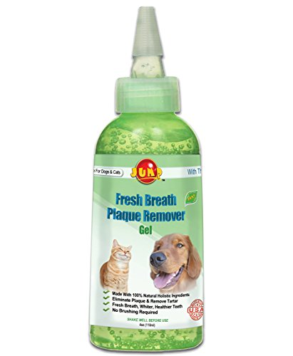 Crystal Clear Jump Fresh Breath Plaque Remover Gel, 4 oz.