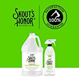 Skout's Honor: Professional Strength Stain and
