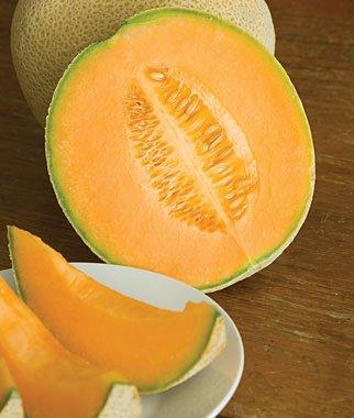 Amazon.com: Cantaloupe, Hales Best Jumbo Organic: Jardín y ...