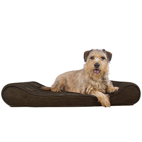 Furhaven Pet Large Microvelvet Luxe Lounger Orthopedic Pet Bed, Espresso, Large (Velvet Bed Pet)