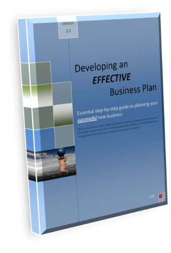 Writing an Effective Business Plan (English Edition)