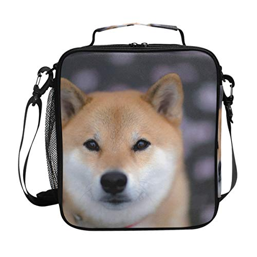 Bag with Zip Closure Insulated Lunch Box Tote Bag For Kids,Adults,School,Office ()