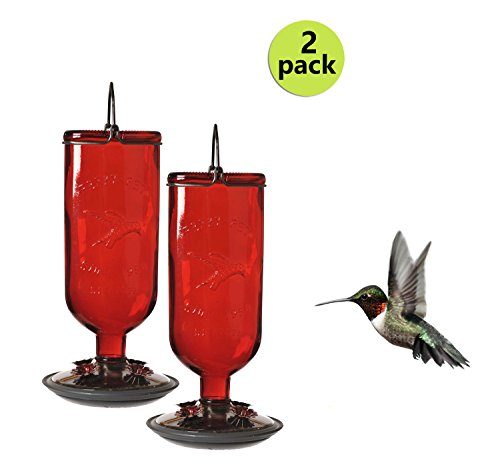 Perky-Pet (Brushed Hummingbird Metal Feeder)