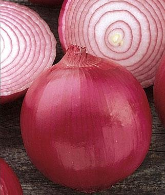 Red Marble Onion 200 Seeds #0614 Item Upc#650348692018