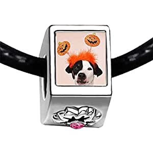 Chicforest Silver Plated cute dog pumpkin on Halloween Photo Light Rose Crystal October Birthstone Flower Charm Beads Fits Pandora Charms