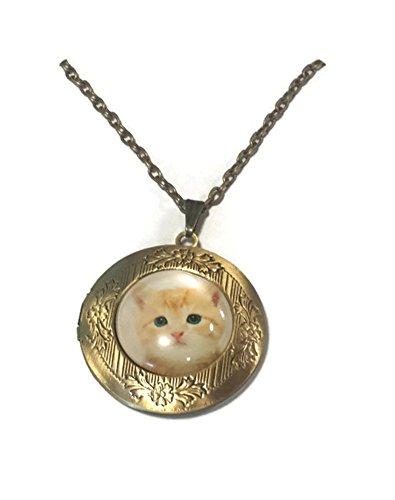 Mama Bear's Gift Shop Orange Kitty Cat Kitten Bronze LOCKET Pendant Necklace with Chain Women's Children's Men's Fashion Jewelry