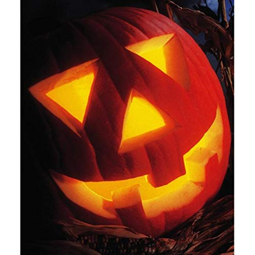 5D DIY Diamond Painting,[Full Drill] by Number Kits Crafts & Sewing Cross Stitch,Wall Stickers for Living Room Decoration,Halloween Decoration (Pumpkin Head(40x30cm))