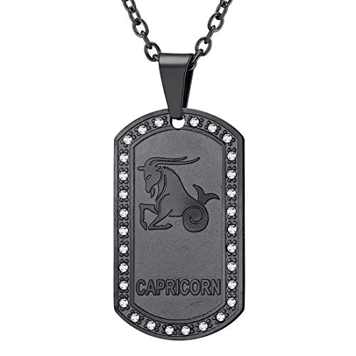 (U7 Jewelry Stainless Steel/18K Gold Plated Chain Dog Tag Pendant Men Women Zodiac Necklace (Black Capricorn))