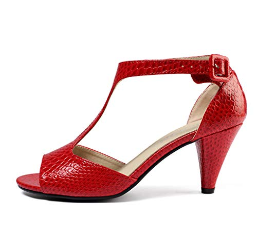 GATUXUS Women Open Toe Ankle T-Strap Kitten Heel Mary Jane Shoes Mid Heel Sandals (US 8, Red Snake)