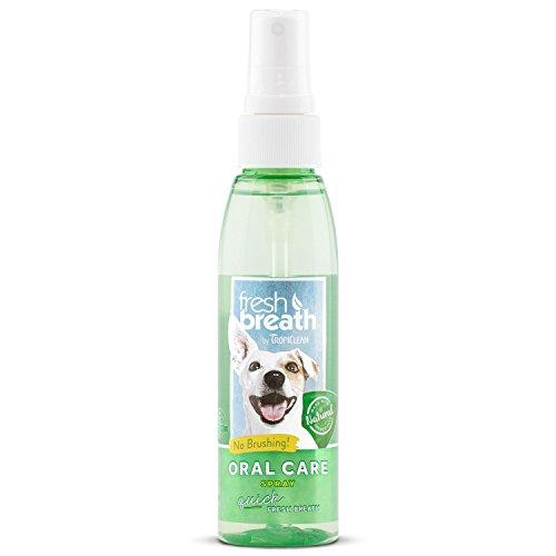 Fresh Breath Toothbrush (Fresh Breath Oral Care Spray)