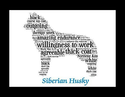 (Siberian Husky Dog Wall Art Print - Personalized Pet Name - Gift for Her or Him - 11x14 matted - Ships 1 Day)