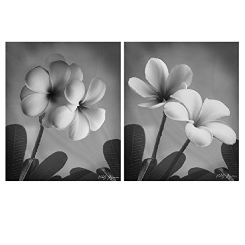 Classic Black & White Floral Photographs. Beautifully Classic; Two 8x10 Poster - Classic Photographs