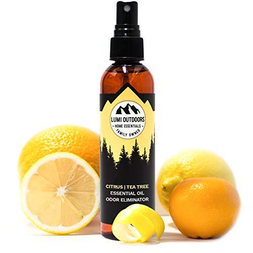(Natural Shoe Deodorizer Spray, Foot Odor Eliminator and Air Freshener - Fresh Citrus Tea Tree Shoe Spray uses Essential Oils As Organic Deodorant)
