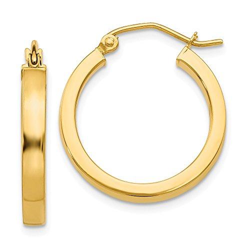 14k Yellow Gold 2x3mm Square Tube Hoops Hoop Round Fine Jewelry Gifts For Women For Her (14k Yellow Gold Glitter)
