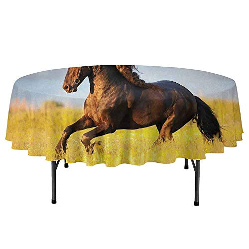 DouglasHill Horses Waterproof Anti-Wrinkle no Pollution Friesian Horse with Mane Gallops in Meadow Equestrian Mystery Vitality Horse Round Tablecloth D40 Inch Yellow Brown Blue