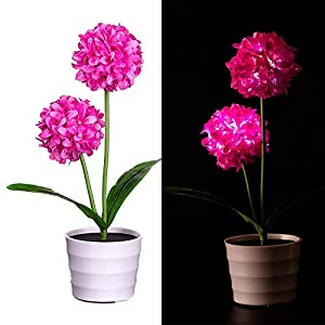 Gotian Solar Onion Ball Flower Lights LED Artificial Rose Pot Flower Bonsai LED Lamp,Lights Artificial Flowers - 1x Solar Onion Ball Flower Bonsai 19