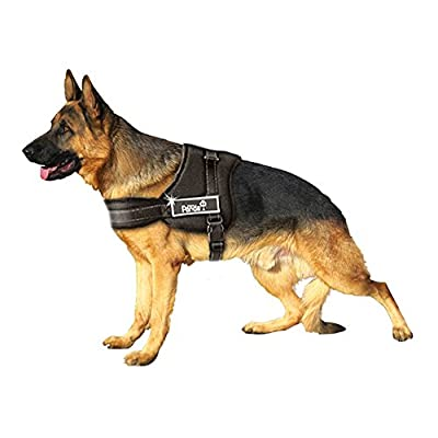 PISSION No Pull Pet Vest Harness Padded Dog Leashes in Training Walking