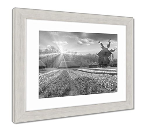 Fields of Tulips in Village, Wall Art Home Decoration, Black/White, 34x40 (Frame Size), Silver Frame, AG5997697 ()