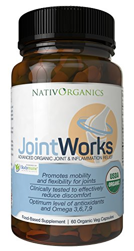 Natural Joint Supplement USDA Organic For Joint Support And Joint Health - Advanced Vegan Joint Supplement And Anti Inflammatory Supplement - 60 Vegan Caps - 2 Months Supply - JointWorks