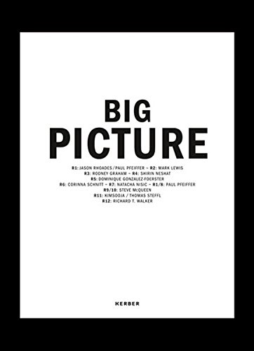 Read Online Big Picture: Places, Projections ebook