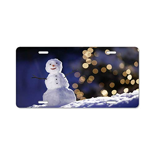 YEX Abstract The Snowman and Flashing Lights- License Plate Frame Car Licence Plate Covers Auto Tag Holder 6