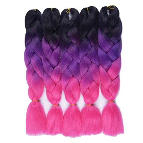 RSBY Ombre Jumbo Braiding Hair Kanekalon Hair for Braiding Black to Purple to Hot Pink 24 Inch 5 Packs/lot -