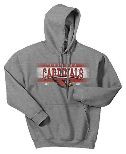Zubaz NFL Arizona Cardinals Men's Banner Logo Hoodie, X-Large, Gray