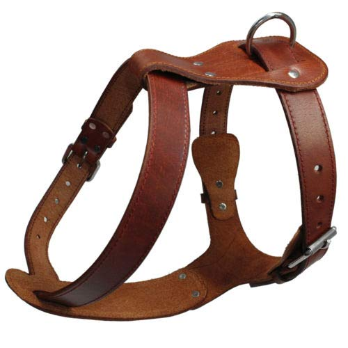 Brown Chest   16-23\ Brown Chest   16-23\ FidgetGear Brown Best Genuine Leather Pet Dog Harness Heavy Duty for Medium Large Dogs Brown Chest   16-23