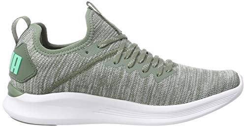 Grigio Donna Scarpe Ignite Flash Wn s Puma Evoknit Green Quarry xxdwqH6Tr4 af89fdae28e