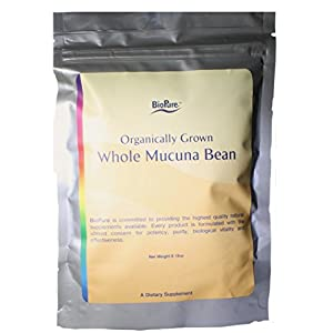 Gut Health Shop 41xCjzFhNfL._SS300_ Organic Whole Mucuna Bean by Biopure - Organically Grown 8.15 Ounce