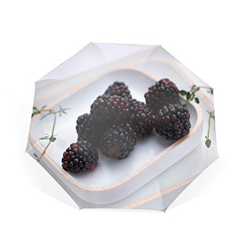 (Blackberries Plate Useful Berry Travel Umbrella, Automatic Folding Compact 46 Inch Rain Umbrella for Men Women)