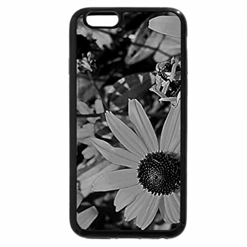 iPhone 6S Plus Case, iPhone 6 Plus Case (Black & White) - The Color of Sunshine