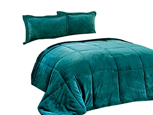 Chezmoi selection 3-Piece Micromink Sherpa relatively easy to fix downwards additional Comforter Set (King, Teal)
