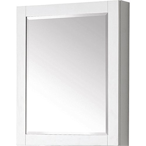 Avanity 14000-MC24-WT Mirror Cabinet for Brooks/Modero/Tribeca, 24