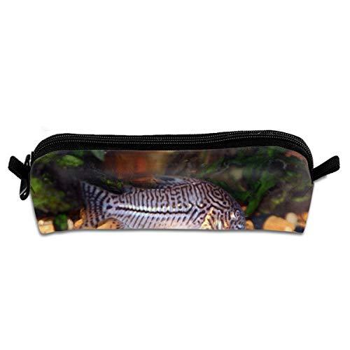 EWFBVa Durable Zipper Stationery Bag Julli Catfish Tropical Cory Animals Big Capacity Pencil ()