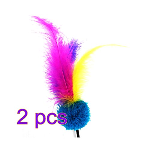 246ce2d4956 HWKAIZ Feather Cat Toy Cat Teaser Turkey Feather Chaser Wand ...
