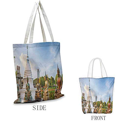 Colombo Zip - Asian Shopping bag is easy to carry Seema Malaka Temple on Beira Lake Colombo Sri Lanka Panorama Cloudscape Full color shopping bag W15.75 x L13.78 Inch Pale Blue Green White