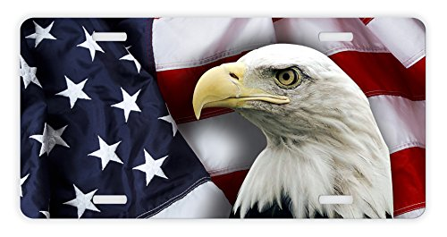 - ThisWear Eagle License Plate Bald Eagle Patriotic USA Flag License Plate Veteran Patriot Novelty License Plate Eagle