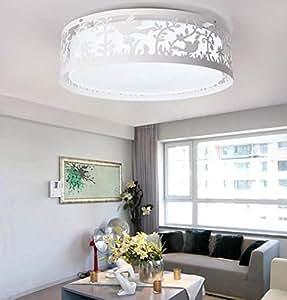Amazon.com: PLLP Ceiling Lamp, Home Living Room Ceiling Lamp ...