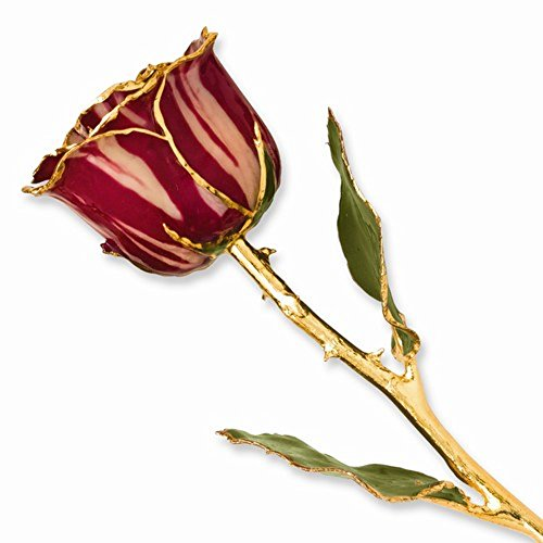 Roxx Fine Jewelry 24K Gold Trimmed Red Abracadabra Rose Real Long Stemmed Rose Many Colors 12