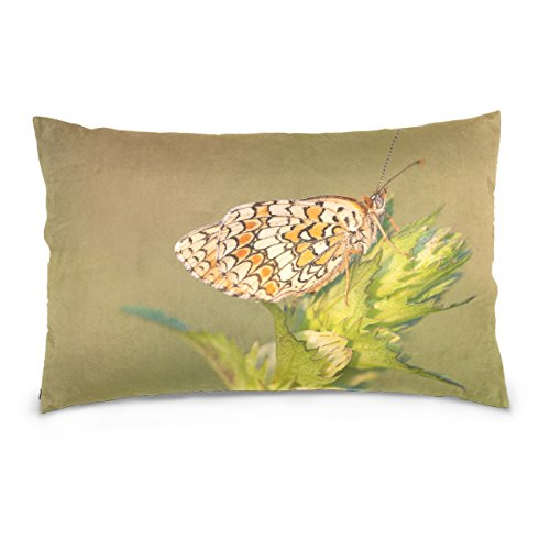 Josid Throw Pillow Cases Covers Double Sided Knapweed Fritillary Melitaea Phoebe Butterfly 20x26 Inches Invisible Zipper Home Decor for Couch ()