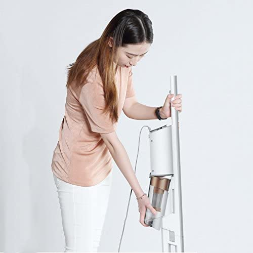 Aspirateur portatif sans fil 2 en 1 [Classe d\'énergie A] Outil de crevasse de filtre de HEPA et brosse de tapisserie d\'ameublement