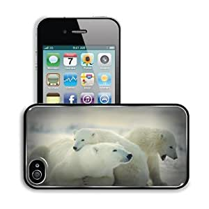 Animals Cubs Polar Bears Baby Apple iPhone 4 / 4S Snap Cover Premium Aluminium Design Back Plate Case Customized Made to Order Support Ready 4 7/16 inch (112mm) x 2 3/8 inch (60mm) x 7/16 inch (11mm) MSD iPhone_4 4S Professional Metal Cases Touch Accessor