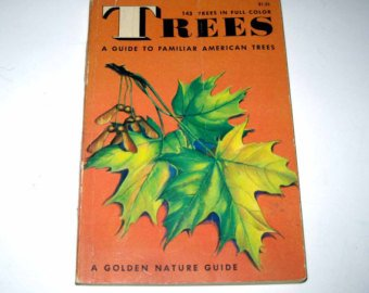 Trees a Guide to Familiar American Trees (A GOLDEN NATURE GUIDE)
