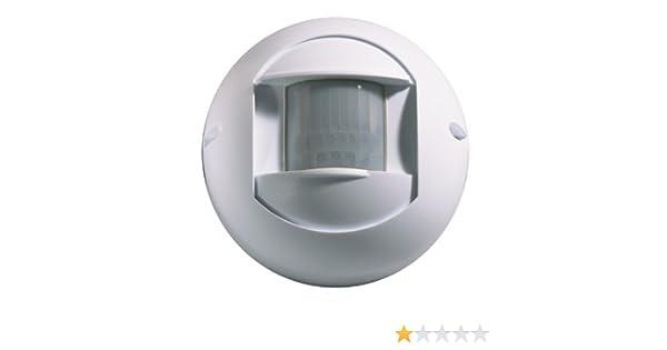 Amazon.com : X10 Powerhouse DM10A PRO Wireless Outdoor Motion Detector : Barking Dog Alarm : Camera & Photo